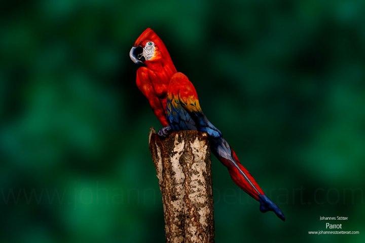 Johannes Stötter's parrot bodypainting